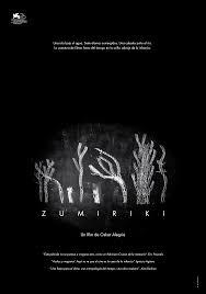affiche zumiriki
